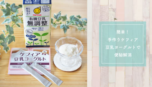 簡単&お手軽!手作りケフィア豆乳ヨーグルトを食べてみた感想